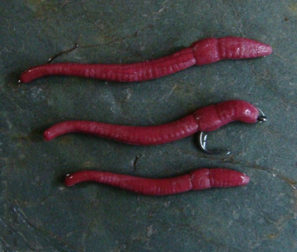 ET POP UP RED WORMS (10)